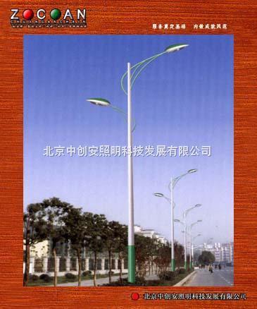 北京中创安道路灯ZCA3001